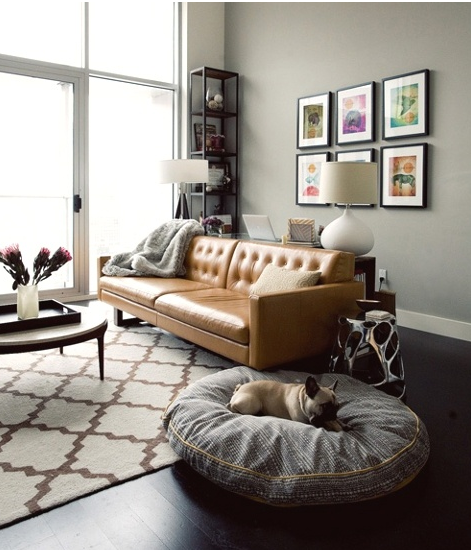 Pet Friendly Home Decor: Classic With A Twist: Welcome Home... To Your Dog Friendly