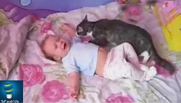 ظل الطفل يبكي حتى فعل القط هذا الشيء الذي لم يتوقعه احد..!!