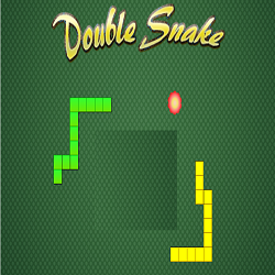 Double Snake Game