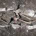 Ossos encontrados em montanha grega podem confirmar lenda arrepiante