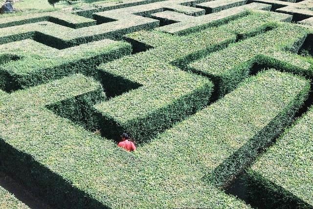 foto labirin di coban rondo
