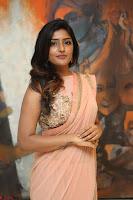 Eesha Rebba in beautiful peach saree at Darshakudu pre release ~  Exclusive Celebrities Galleries 030.JPG
