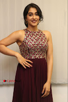 Actress Regina Candra Latest Stills in Maroon Long Dress at Saravanan Irukka Bayamaen Movie Success Meet .COM 0004.jpg