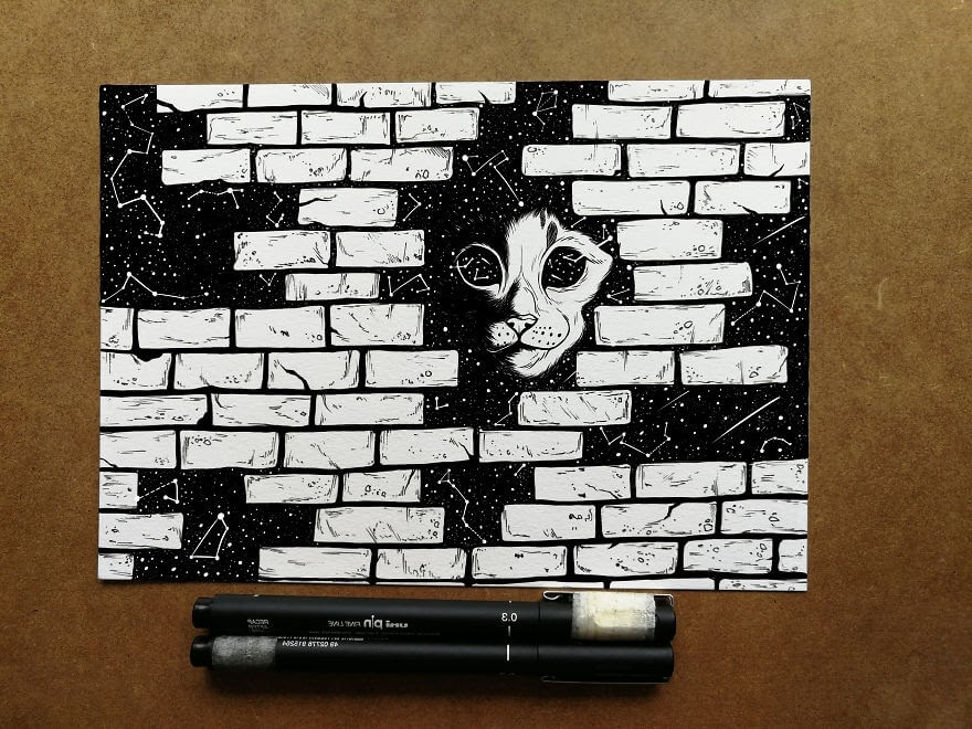 12-Hidden-Galaxy-Cat-Bráulio-Monteiro-Moleskine-Pen-and-Ink-Animal-Illustrations-www-designstack-co