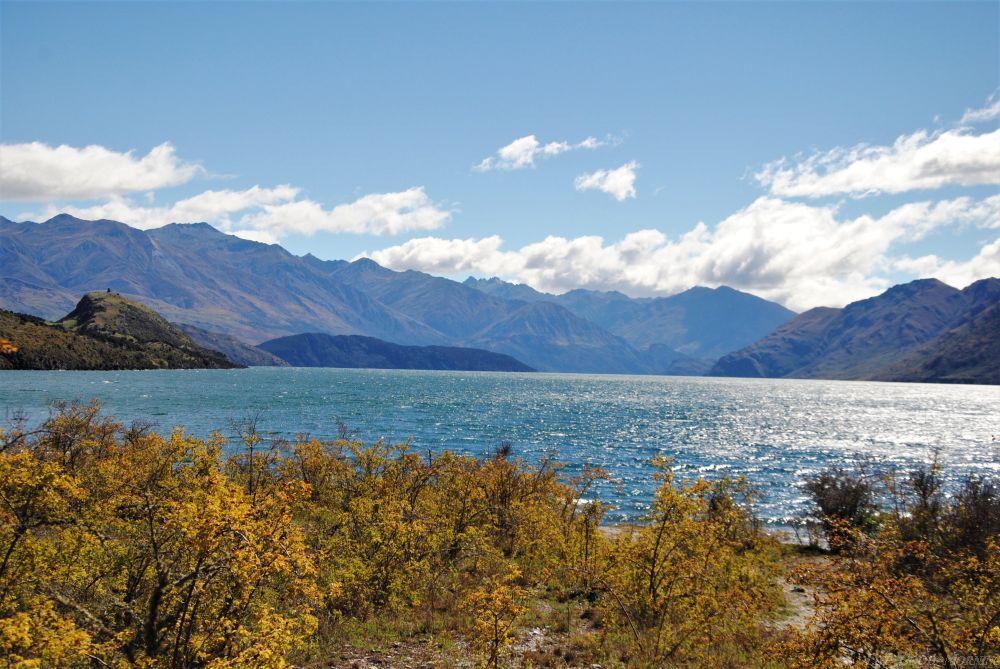 Nowa Zelandia bez samochodu  - co, gdzie, za ile?