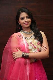 Geethanjali sizzles in Pink at Mixture Potlam Movie Audio Launch 006.JPG