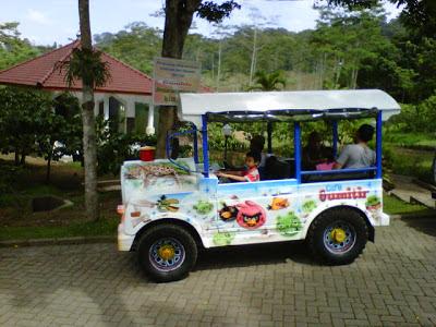 Kereta wisata di rest area wisata Cafe Gumitir Banyuwangi.