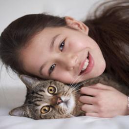 تربية القطط في المنزل واضرارها -%D8%AA%D8%B