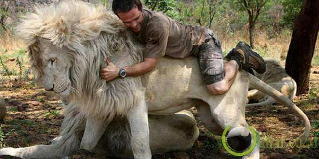 Pria Yang Hidup Berdampingan Dengan Singa