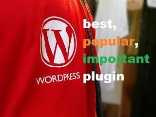 Plugin Wordpress Terbaik Terpopuler dan Terpenting untuk Blog Anda