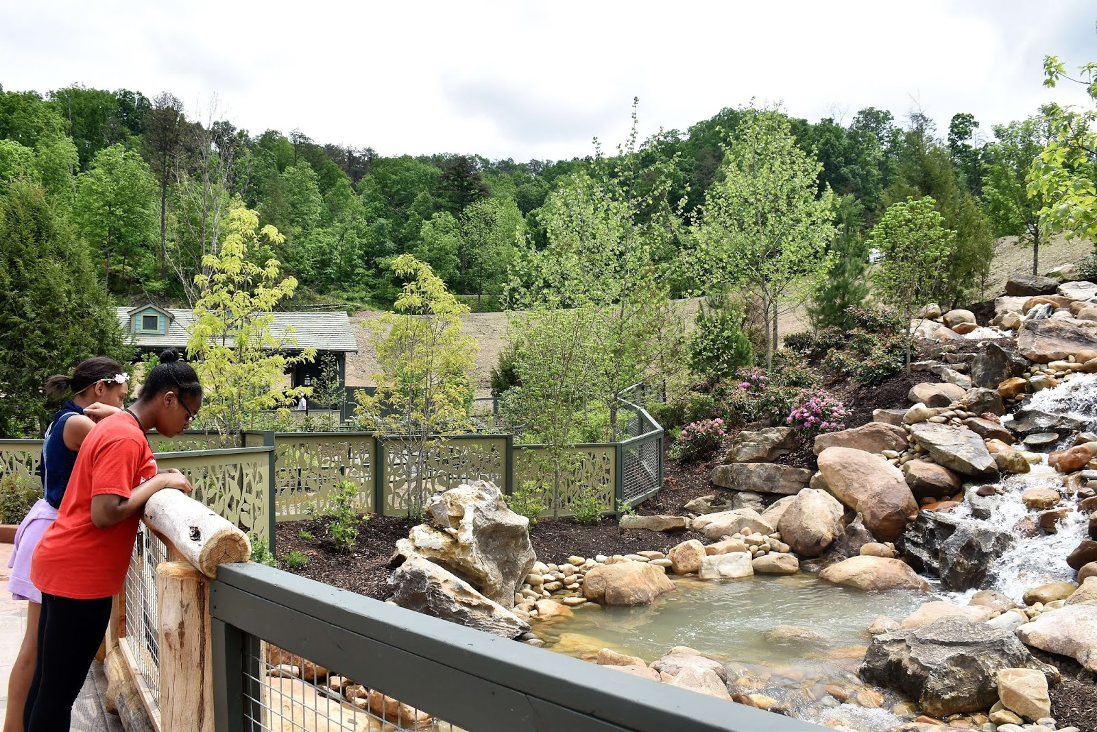 Dollywood's Wildwood Grove is Now Open!