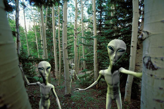 Relax, it'll be 1,500 years before aliens contact us
