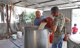 Ηλεία: Διακόπηκε η παραλαβή γάλακτος στα ορεινά!