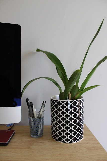 monochrome plant pot