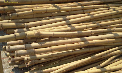 Decorative bamboo sticks online-Buy bamboo poles-Decorative bamboo sticks and canes- Bamboo pole for sale