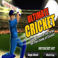 Play Online Ultimate Cricket Game