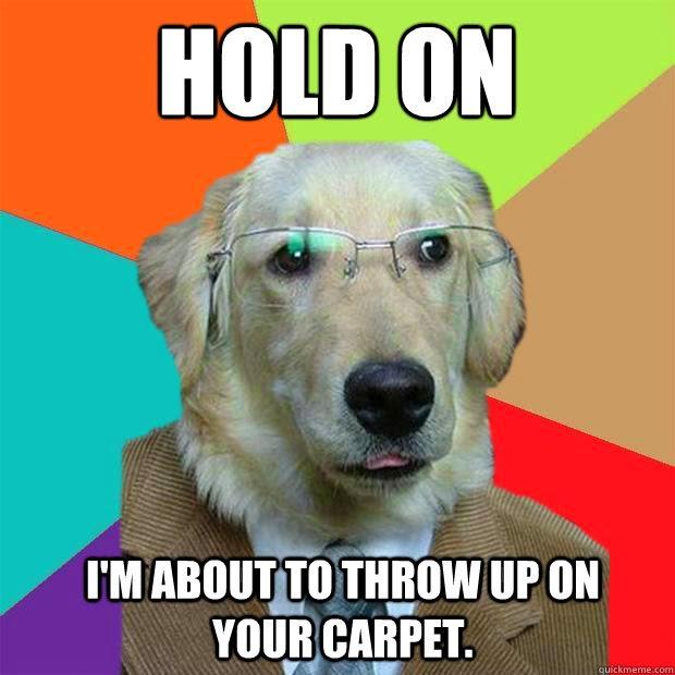 Make Dog Throw Up After Eating Pills
