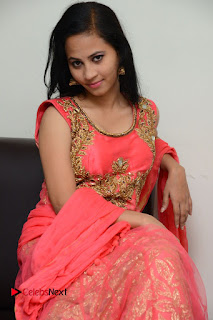 Actress Aasha Rakul Pictures in Red Long Dress at Vetade Puli Audio Launch 0098