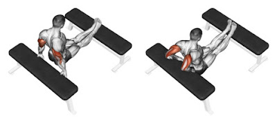Chest And Triceps Superset Workout Programme