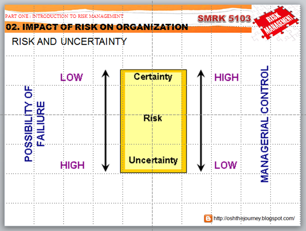 bp risk management case study
