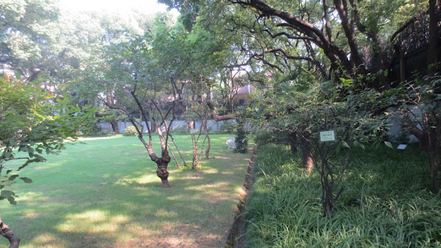 Residenz von Song Qingling - Garten