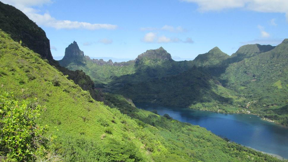 Panorama sur la Baie de Opunohu à Moorea en Polynésie