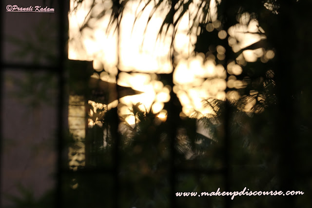 Natural light bokeh with Canon EOS 70D DSLR