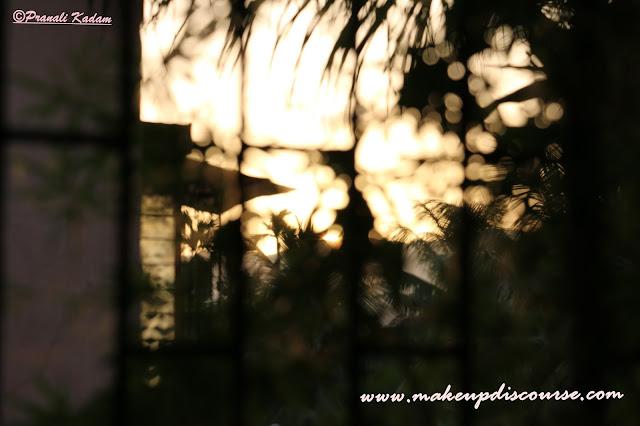 Natural light bokeh with Canon EOS 70D DSLR