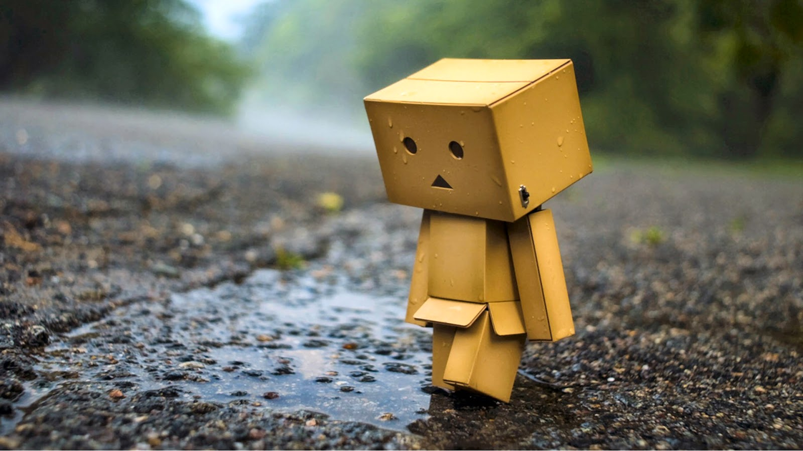 Wallpaper Danbo Sedih
