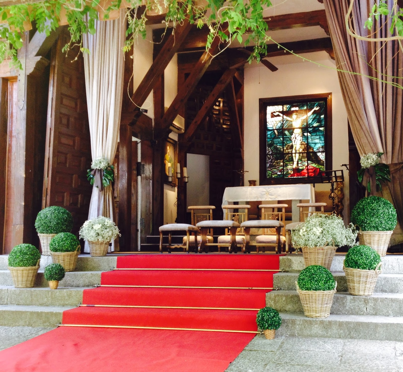 P talos naturales alquiler de alfombra plantas en alquiler - Alquiler alfombras ...