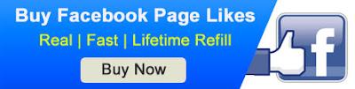 buy facebook page likes delhi