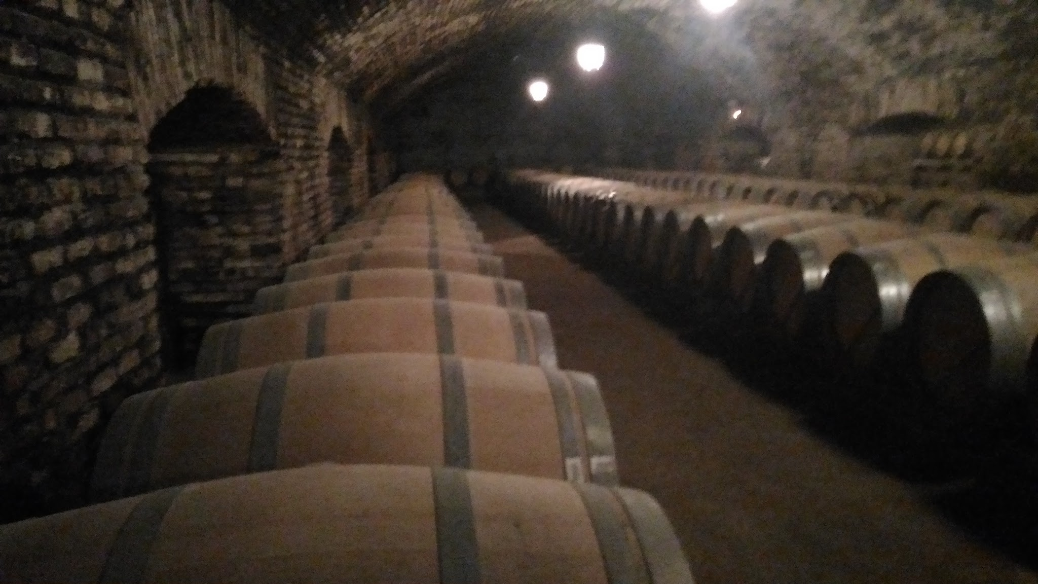 estoque de vinhos Concha Y Toro