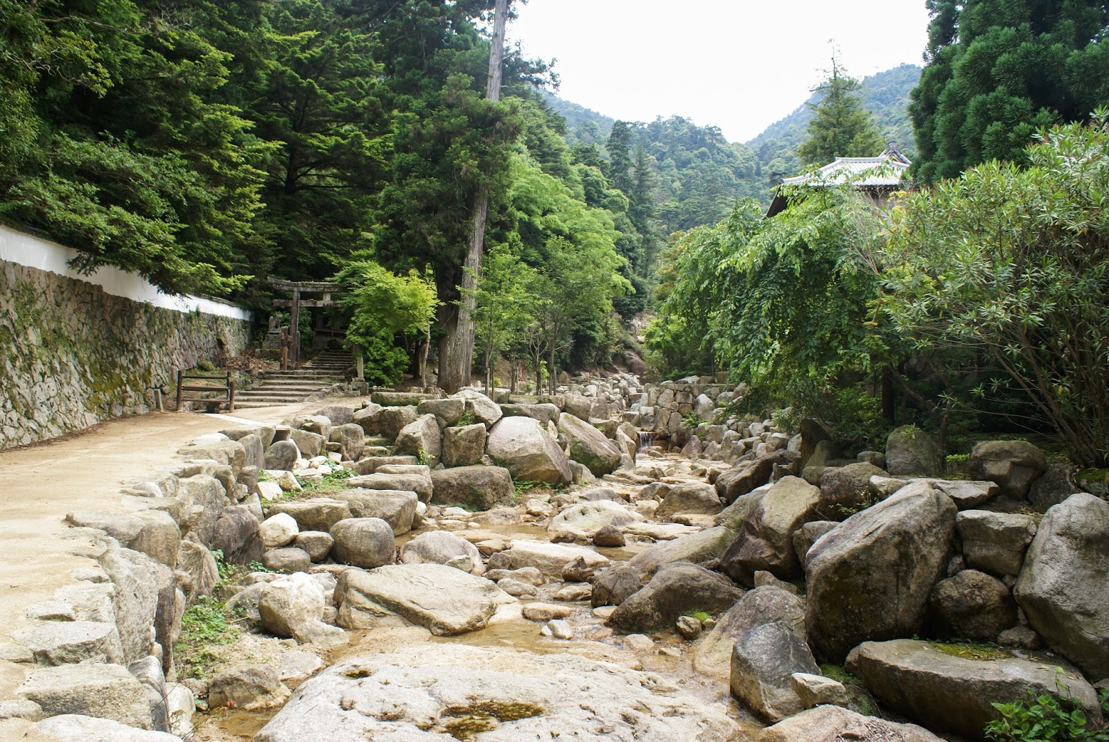 forest stream stone japan miyajima itsukushima