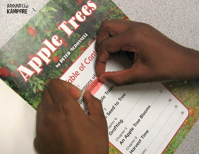 Highlighting collective nouns in nonfiction books about apples.