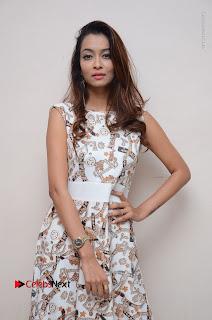 Telugu Actress Reshmi Thakur in Long Dress at Plus One ( 1) Audio Launch  0057.jpg