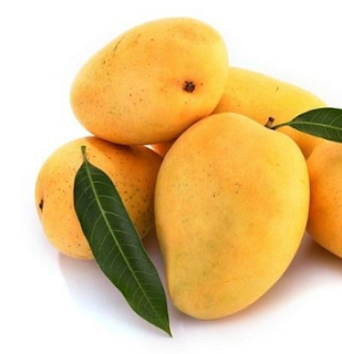 Mangoes contain vitamin K which speeds up the healing process of bone fractures. It reduces the risk of asthma because of its beta-carotene content. Mangoes are rich in fiber and water content, so it helps in a healthy digestive tract. It boosts the immune system because of its vitamin C and vitamin A contents. The tender leaves of mango tree are useful in diabetes.