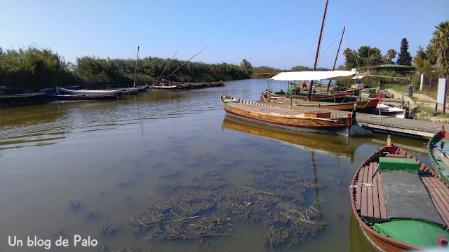 Embarcadero con barcas tradicionales