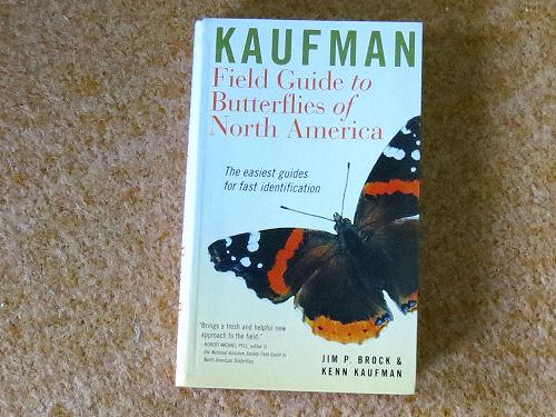 Kaufman Butterfly field guide
