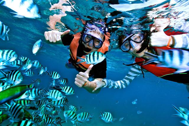 Kepulauan%2BKarimunjawa%2BSnorkeling Kepulauan Karimunjawa Destinasi Bahari Penuh Pesona, yang Mendunia