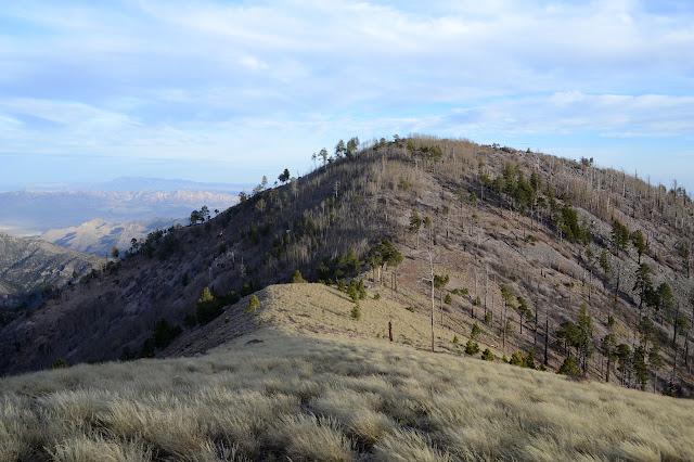 Sentinel Peak