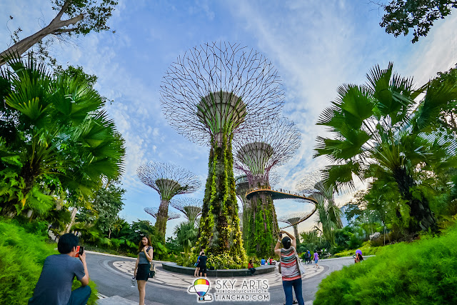 Gardens by the Bay is one of my top favourite place to visit in Singapore