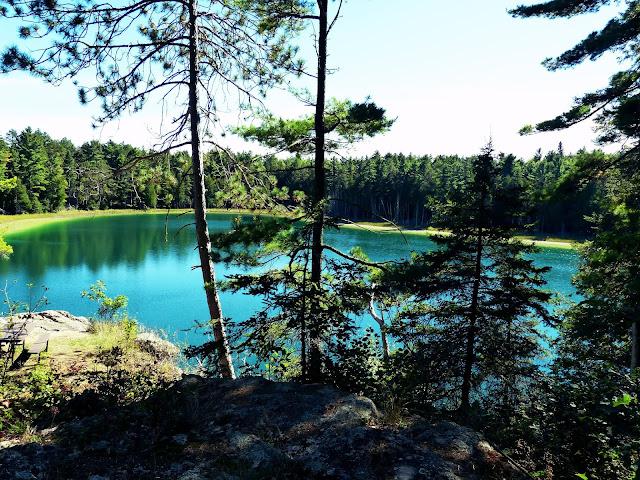 Wir verlassen die Petroglyps Site um noch etwas zu laufen. Der Park hat nur bis 17:00 geoeffnet, so dass uns die Zeit fuer einen der Trails jetzt zu knapp ist. Statt dessen laufen wir zum McGinnis Lake und machen hier ein kleines Picknick.   Mc Ginnis Lake is one of only a handful of meromicic lakes (layers of water that don't intermix) in Canada.