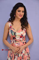 Actress Richa Panai Pos in Sleeveless Floral Long Dress at Rakshaka Batudu Movie Pre Release Function  0046.JPG
