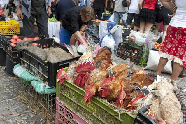 Barcelos-mercato