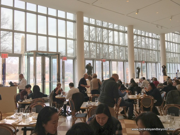 Petrie Court Cafe at Metropolitan Museum of Art in NYC