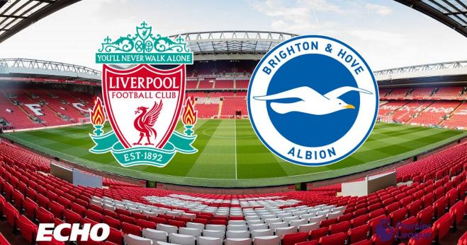 Susunan Pemain Liverpool vs Brighton & Hove Albion