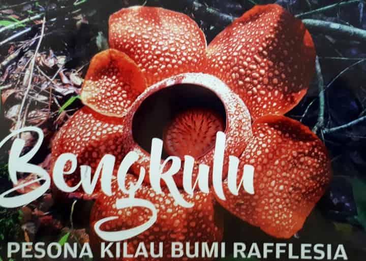 Pesona Bumi Rafflesia Pariwisata Bengkulu 2017