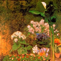 Les flors (Maria Rosa Corretgé Olivart)