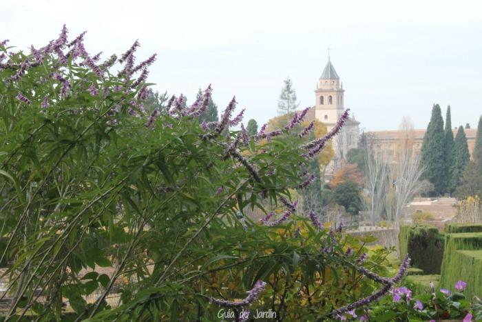 Vistas desde el Generalife