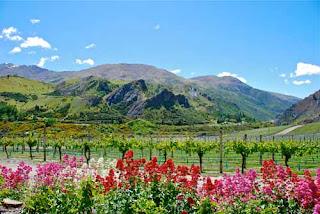 Chard Farm Winery New Zealand